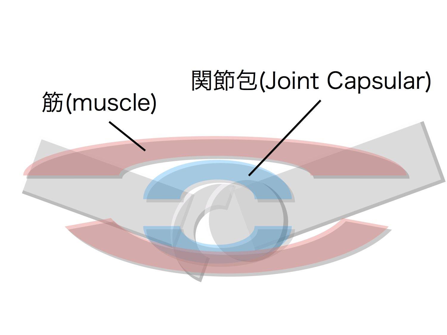 クリニカルリーズニング 脊椎・骨盤編1