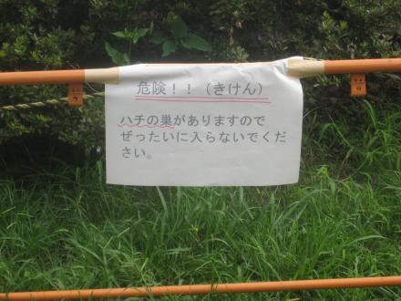 僕の散歩コース ♪~♪