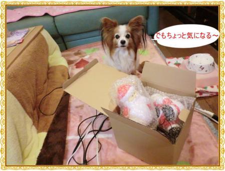 CIMG0394_20121203233428.jpg