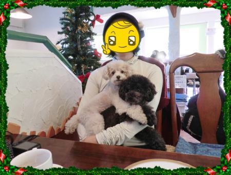CIMG0623_20121222223154.jpg