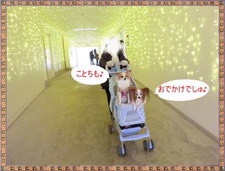 CIMG9940_20130102223729.jpg