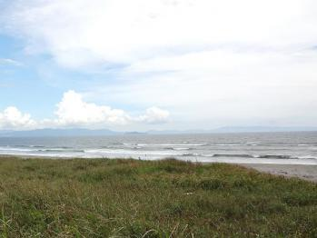 surf kogaura 358