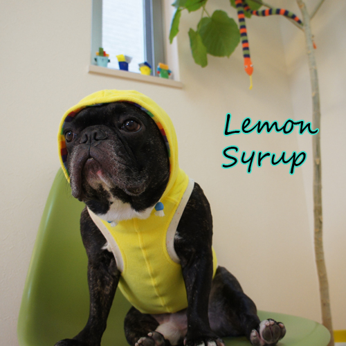 lemon-syrup.jpg