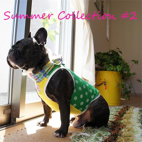 summer-collection-2.jpg