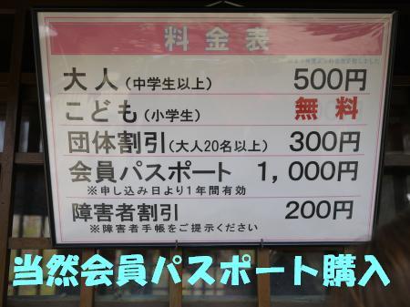 25041802.jpg