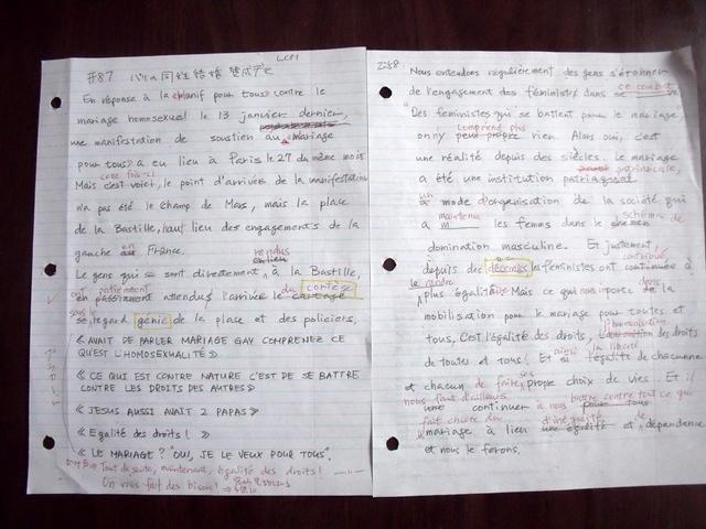 虎と小鳥のフランス日記 87話 パリの同性結婚賛成デモ ディクテ