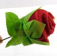 薔薇の花・・