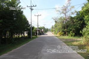 この記事「ヤオ ノイ島で写真の勉強会」の写真 (339-005)
