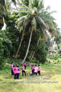 この記事「ヤオ ノイ島で写真の勉強会」の写真 (339-050)