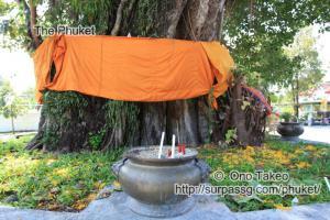 この記事「僧侶の交通安全祈願」の写真 (347-082)