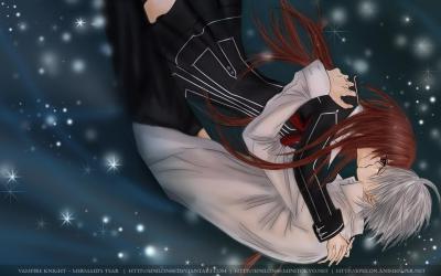 Vampire knight93