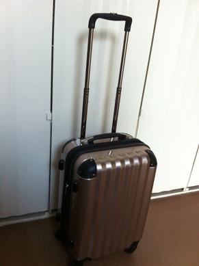 carrycase1.jpg