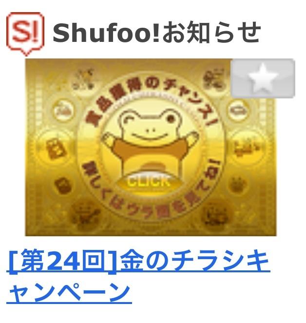 shufoo_130530.jpg