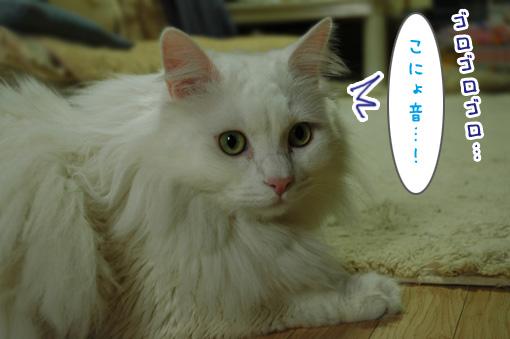02_20120529185557.jpg