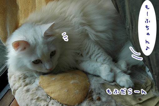 02_20121109174219.jpg