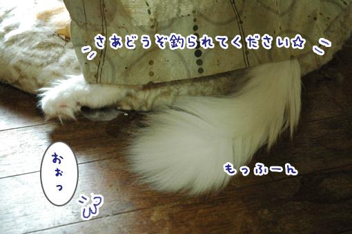 04_20121004133407.jpg