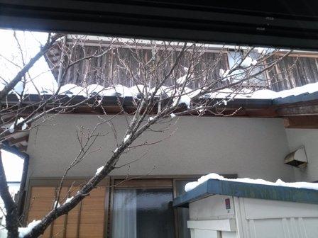 大雪の外1
