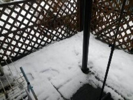 大雪の外4