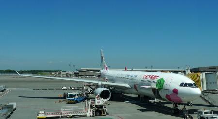 成田東方航空