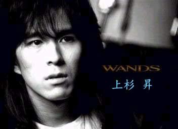 WANDS上杉昇2