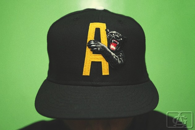Acapulco-Gold-Fall-2012-16-630x420.jpg
