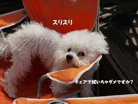 20110910_2073539.jpg