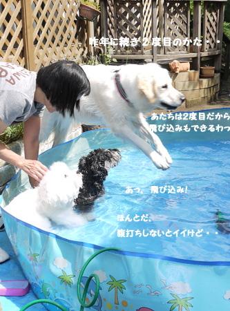 20110910_2073542.jpg