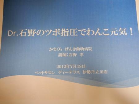 P7206384.jpg