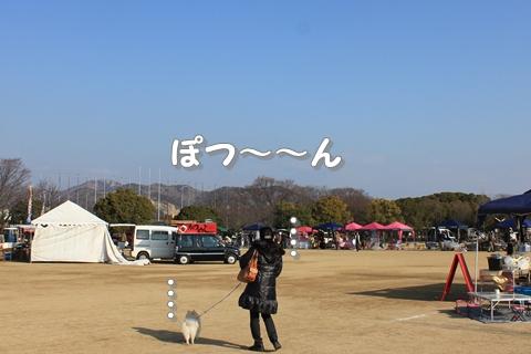 20130212-IMG_7787.jpg