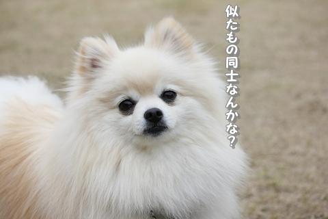 20130322-IMG_9878.jpg