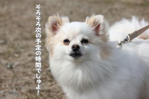 20130416-IMG_1137.jpg