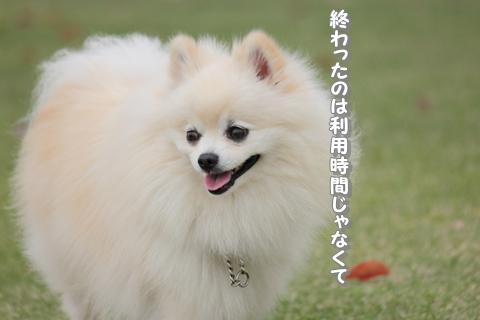 20130421-IMG_7145.jpg
