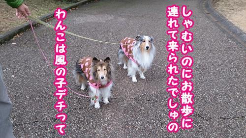 1450_convert_20140204142414.jpg