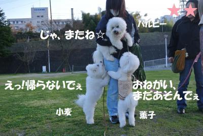 188_convert_20130330121100.jpg