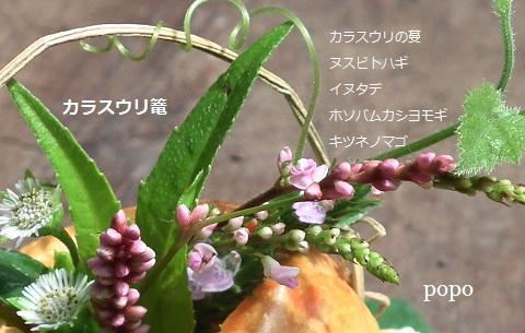 nusubitohagikago111.jpg