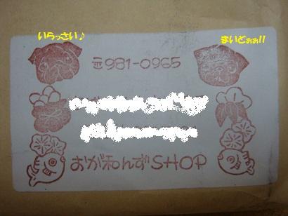DSC09810 - コピー