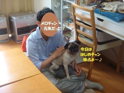 DSC00321_20121211210104.jpg