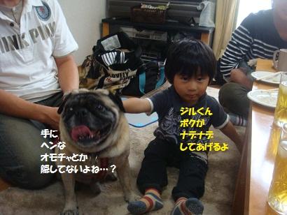 DSC00364_20121211210103.jpg