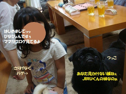 DSC00458_20121211001048.jpg
