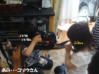 DSC00493_20121212132609.jpg