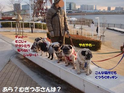 DSC00608_20120805150830.jpg