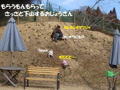 DSC00684_20120813152247.jpg