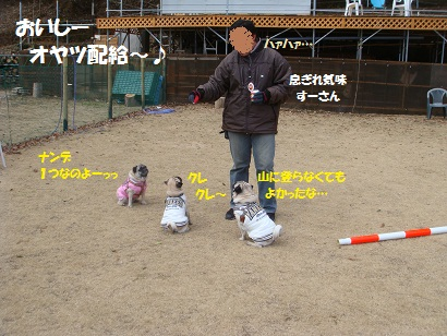 DSC00694_20120813152247.jpg