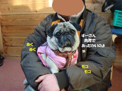 DSC00827_20120814120459.jpg