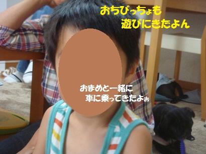 DSC00906_20121215222404.jpg