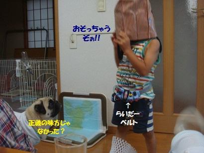 DSC00968_20121216000133.jpg