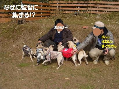 DSC01045_20120823185621.jpg