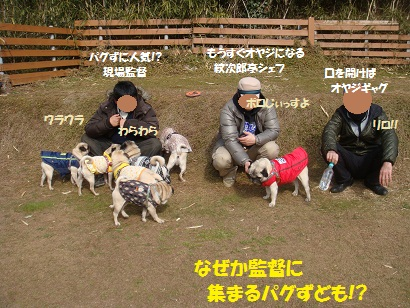 DSC01052_20120823184558.jpg
