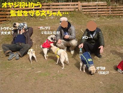 DSC01059_20120824002439.jpg