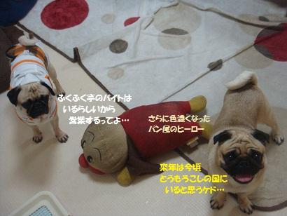 DSC01439_20120805121126.jpg
